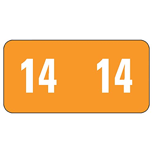 Smead ETS Color-Coded Year Label, 2014, Label Sheet, Orange, 250 labels per Pack (67914)