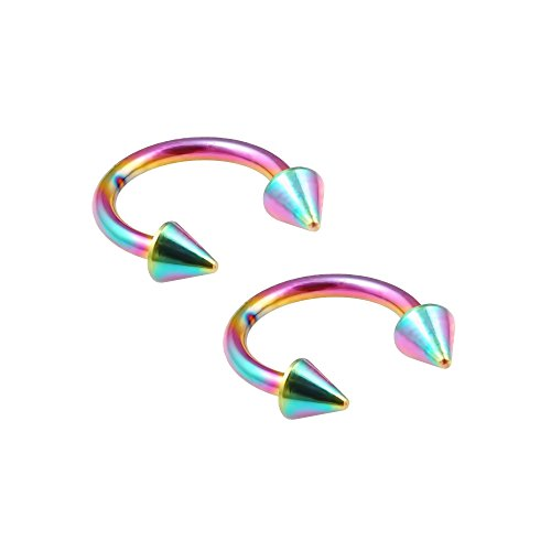 Bling Unique 2pc 16g Rainbow Circular Barbell Horseshoe Earrings Anodized Stainless Steel Tragus Daith Spike 8mm
