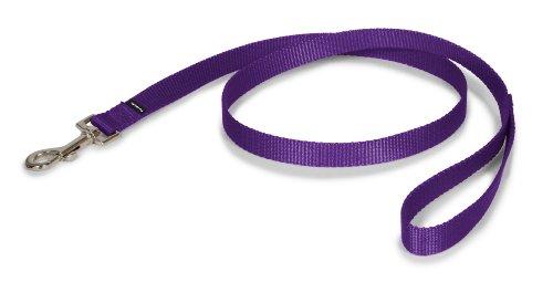 Premier Leash, 3/4 by 4-Feet, Deep Purple, My Pet Supplies