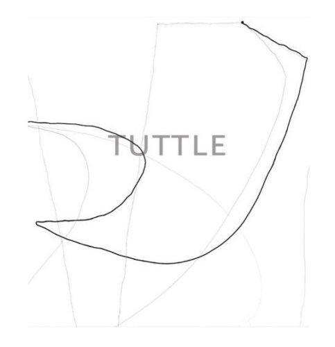 The Art of Richard Tuttle