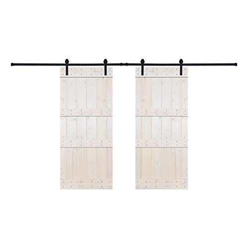 Paneled Wood Painted Double Barn Door DDB Series (Set of 2)