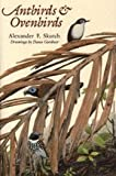 Antbirds and Ovenbirds, Alexander Frank Skutch, 0292776993