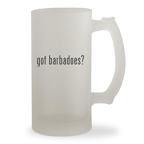 got barbadoes? - 16oz Sturdy Glass Frosted Beer Stein