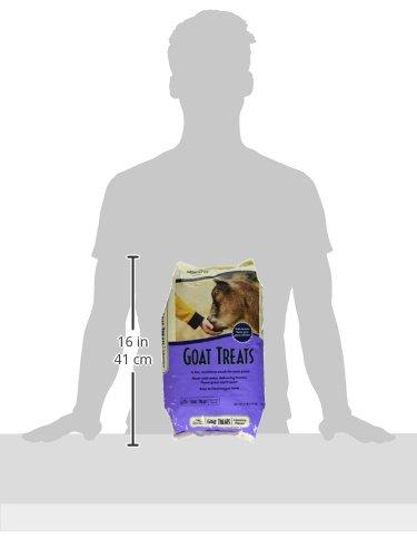 Manna Pro Licorice Goat Treats, 6 lb by Manna Pro (Image #4)