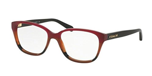 Coach Women's HC6103 Eyeglasses Aubgn Cognac Varsity Stripe 54mm