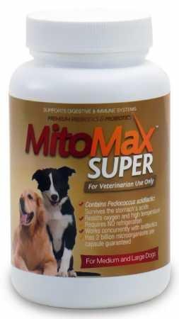 MitoMax Super Probiotics for Dogs Medium/Large (90 Caps)