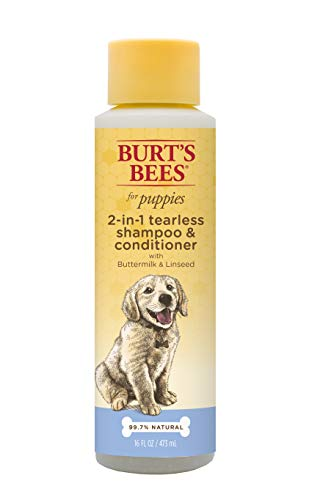 Burt's Bees for Puppies Tearless 2 in 1 Shampoo and Conditioner with Buttermilk and Linseed Oil | Dog Shampoo, 16 Ounces (Best Shampoo For Small Dogs)