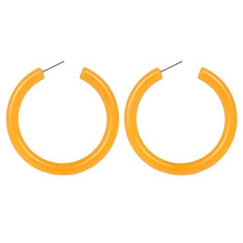 (CHLZYD Simple European and American Earrings Wild Ladies Jewelry Tassel Stainless Steel Gifts for Women Girls)