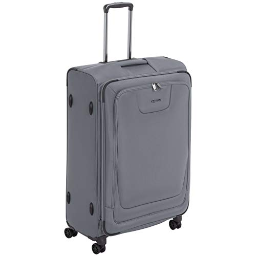 AmazonBasics Expandable Softside Spinner Luggage Suitcase With TSA Lock And Wheels - 29 Inch, Grey ()