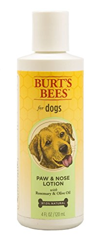All Natural Burts Bees Paw and Nose Lotion