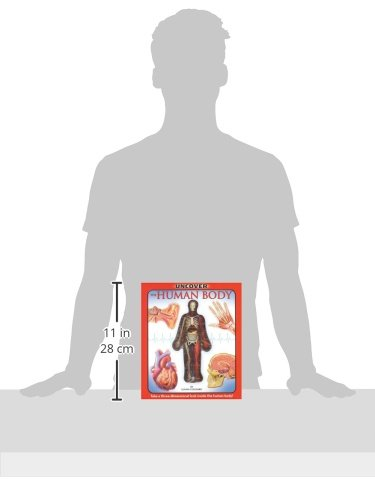 Uncover the Human Body: An Uncover It Book by Transition Vendor (Image #1)
