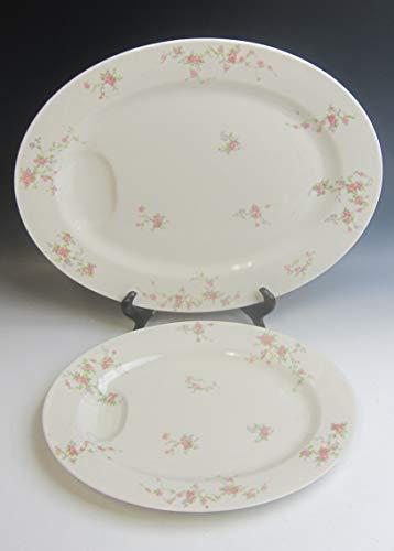 (Lot of 2 Haviland NY China PINK SPRAY Oval Serving Platters 11