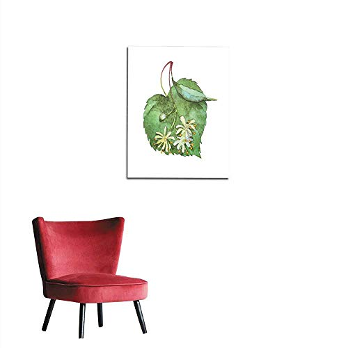 (longbuyer Photo Wall Paper Linden Inflorescence on White Mural)