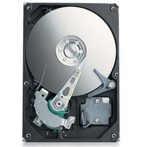 Seagate ST303204N1A1A-RK 320 GB Ultra ATA/100 Internal Hard Drive by Seagate