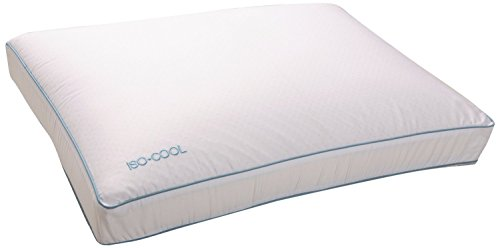Iso-Cool Memory Foam Pillow, Gusseted Side Sleeper,Standard 2 Pack