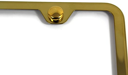 Au-Tomotive Gold Reveals State Stickers INC DanteGTS Honda Accord Stainless Steel License Plate Frame Engraved Chrome Made in USA Frame Mirror Bright Chrome
