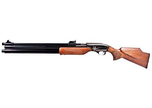45 cal air rifle - 5