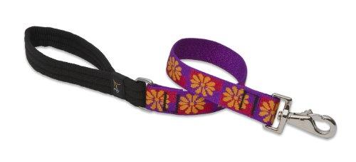 Lupine 1-Inch Flower Box Dog Lead, 2-Feet, My Pet Supplies