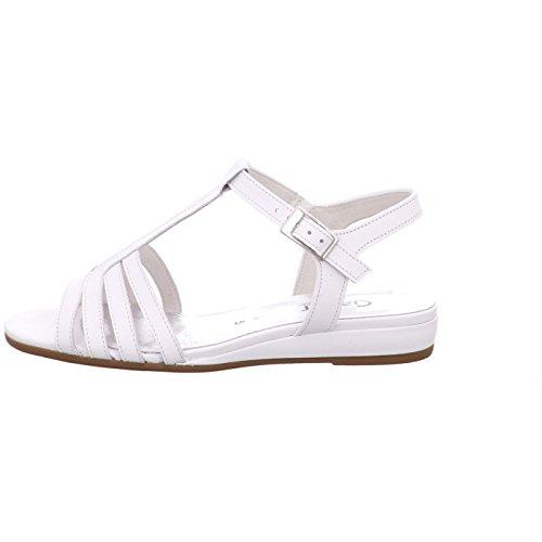 Weiss White, (Weiss) 82.801.50 White
