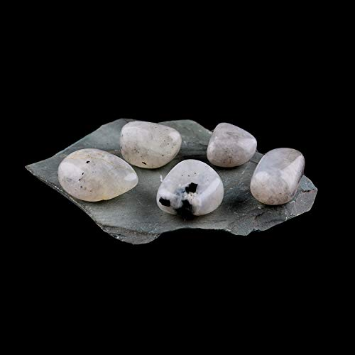 Jaguar Gems Close Out Sale Natural Moonstone Tumbled, Natural Crystals and Gemstones, Healing Crystals, DIY Jewelry Making Crystals, Loose Wholesale Supplies, Home Decor Specimen