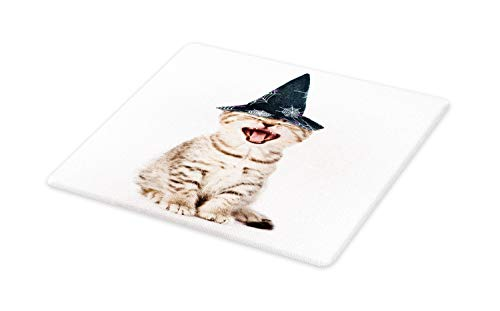 Lunarable Halloween Cat Cutting Board, Studio Shot Photo of Angry Baby Kitten with Spider Web Ornamental Witch Hat, Decorative Tempered Glass Cutting and Serving Board, Small Size, -