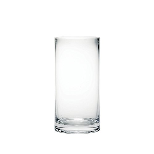 20cm Tall Clear Glass Cylinder Flower Vase Oasis