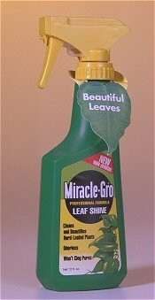 bonsaiboy-miracle-grow-leaf-shine-12-oz