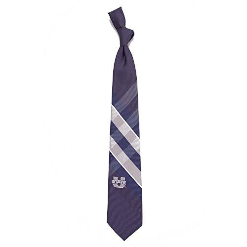 (Eagles Wings Utah State University Grid Tie )