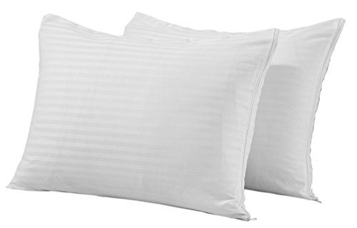 Niagara Sleep Solution Queen Pillow Protectors Premium Set of 2 Zippered 200 300 Thread Count Cotton Sateen Pair Hypoallergenic Pillow Cases Hotel Quality Soft Anti Shrink Bears Dozens of Washes