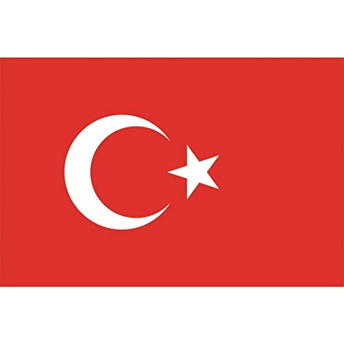 Rimi Hanger 90cm X 150cm Printed World Cup National Flags Long Celebrations Country Flags Banners (Turkish Flags One Size(90cmx150cm)