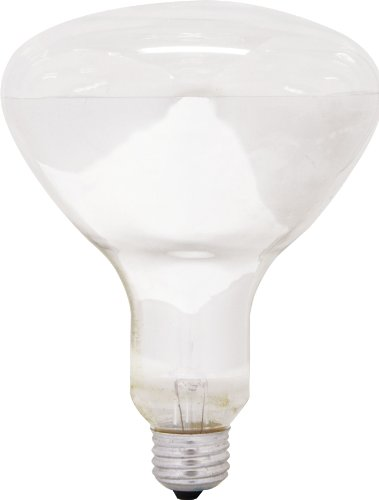 GE Lighting 80940 65-Watt 640-Lumen Track and Recessed R30 Incandescent Light Bulb, Soft White, ()