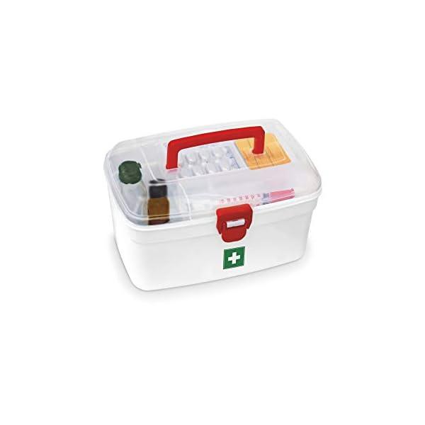 317cTs PGrL Milton Medical Box