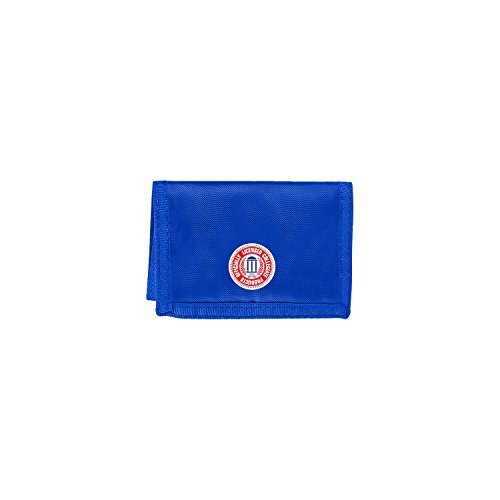 The Northwest Company Officially Licensed NCAA Kentucky Wilcats Chamber Wallet (Kentucky Bag Laptop Wildcats Ncaa)