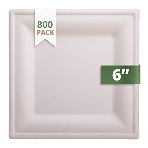 CaterEco Bagasse Compostable Disposable Plates (800 Count) | 6