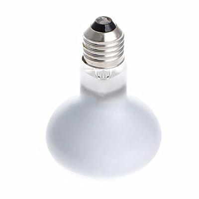 Corner Biz Aquarium Reptile UVA Poly Sand Light Lamp Bulb Spotlights Warm 220V 25/40/50/60/75/100W