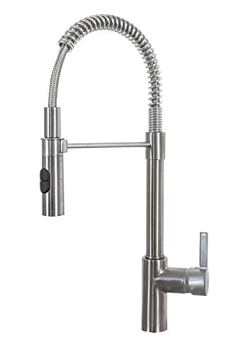 Franke FFPD20480 Fuji Single Handle Pull-Down Kitchen Faucet, Satin Nickel