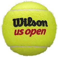 18.99  NEW  WILSON CHAMP   Tennis Balls  1 dozen  balls in 4 ball tubes