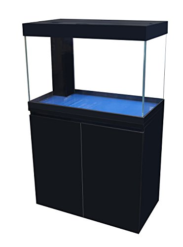 Aqua Japan 45 Gallon Starfire glass Aquarium package with built in LED lights by Aqua Japan