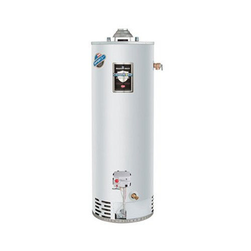 (40 Gallon - 40,000 BTU Defender Atmospheric Vent Energy Saver Residential Water Heater (Nat Gas))