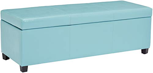 (First Hill Damara Lift-Top Storage Ottoman Bench with Faux-Leather Upholstery, Robin's Egg Blue)