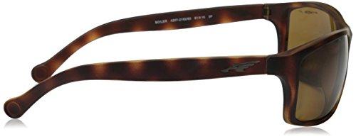 Arnette Sonnenbrille BOILER (AN4207) Fuzzy Havana 215283