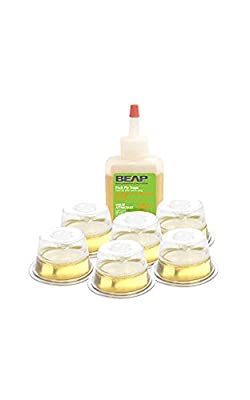 BEAPCO Drop-Ins Fruit Fly Traps