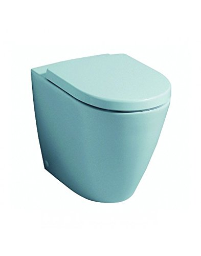 Pozzi Ginori Toilet Fast Vase Floor Rimfree With Seat Amazon