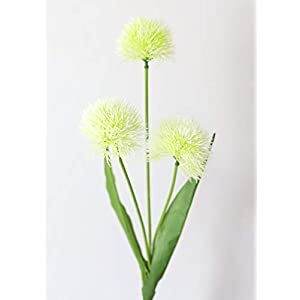 "Cream Green Artificial Allium Ball Flowers - 26"" Tall 38"