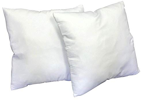 Web Linens Inc Multiple Sizes - Set of 2 - Poly Pillow Inserts with Zippered Cover- Premium Quality- 24x24- Exclusively by Blowout Bedding RN# 142035