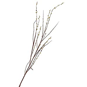 Tall Artificial Pussy Willow Stems | 2 Stems | for Indoor Decor 102