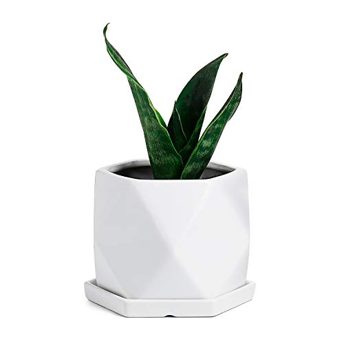 Greenaholics Plant Pots - 5.7 Inch Diamond Ceramic Planters for Snake Plant Seedling Small Plants, with Saucers, White