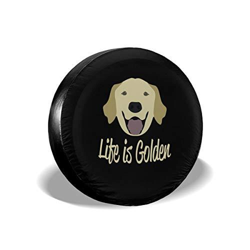 Shadidi Life is Golden (Golden Retriever) Spare
