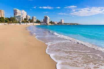 ALICANTE San Juan Beach of La albuf ereta with Palms Trees ...