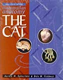 Mammalian Anatomy : The Cat, Fishbeck, Dale W. and Sebastiani, Aurora, 0895823640